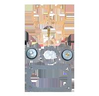 Weber / Dellorto Carburettor Service Kits & Mountings