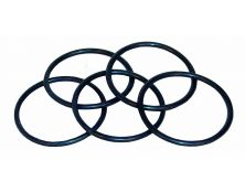 Spacer Plate 'O' Ring